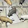 Bad Computer Karma
