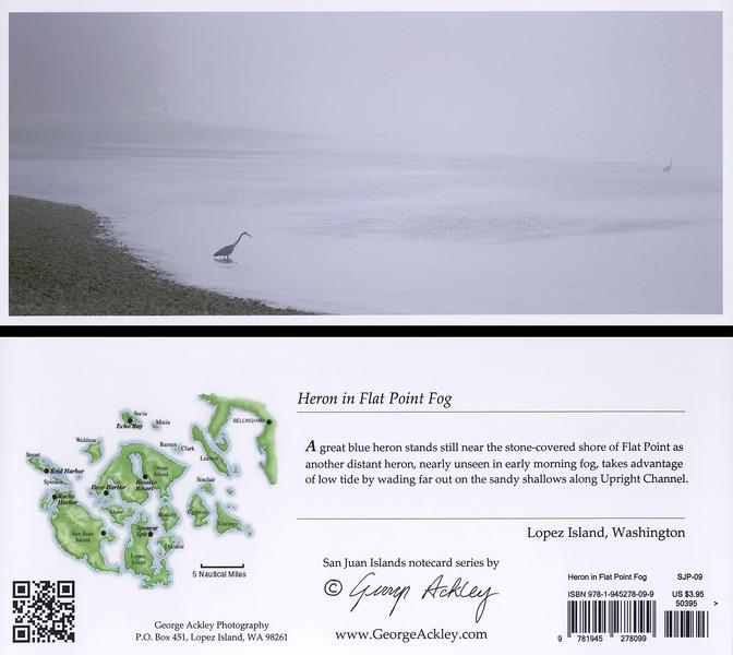 Heron in Flat Point Fog