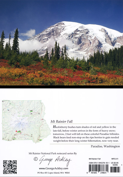 Mt. Rainier Fall