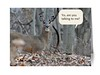 """Inside reads: """"Because of his early fame, later in  life Bambi had issues making friends."""""""