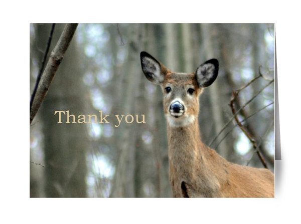 """Inside reads:  """"Thank you."""""""