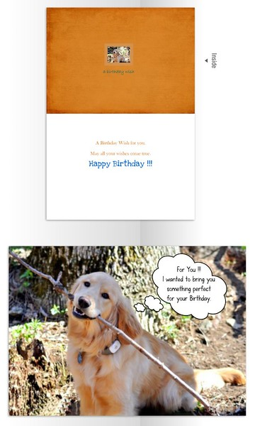 Inside reads:  A Birthday Wish for you.  May all your wishes come true.  Happy Birthday.