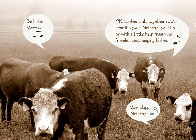 Inside reads:  Happy Birthday