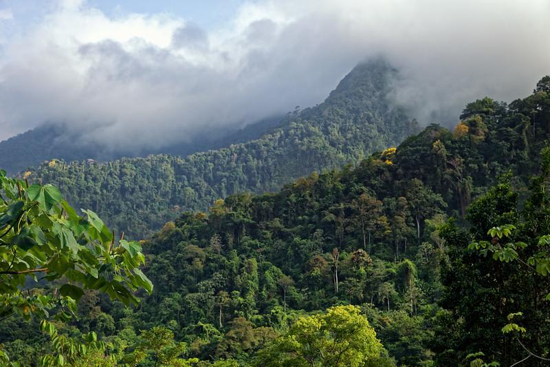 El Tuccuche hidden in cloud, Northern Range