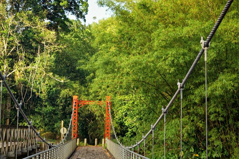 Marianne suspension bridge, Blanchissuese