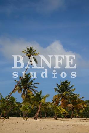 Vieques-NL-DanBanfe-8164