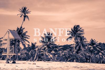 Vieques-NL-DanBanfe-8191