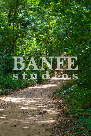 Vieques-NL-DanBanfe-8092