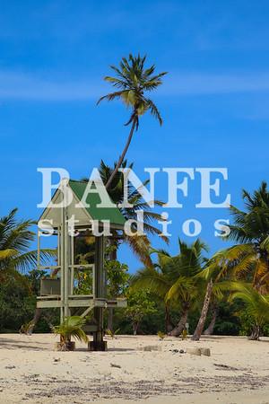 Vieques-NL-DanBanfe-8183