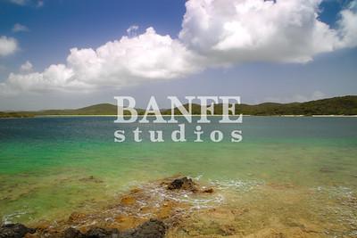 Vieques-NL-DanBanfe-6565