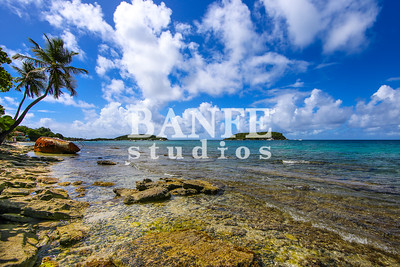 Vieques-NL-DanBanfe-8647