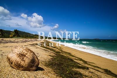 Vieques-NL-DanBanfe-8457