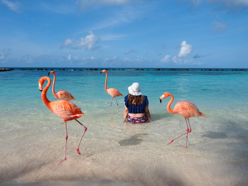 Amanda with flamingos in Aruba