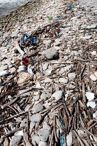 Broken pieces of wood on the shore of Bonaire