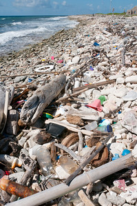 Litter piled on the shore of Bonaire
