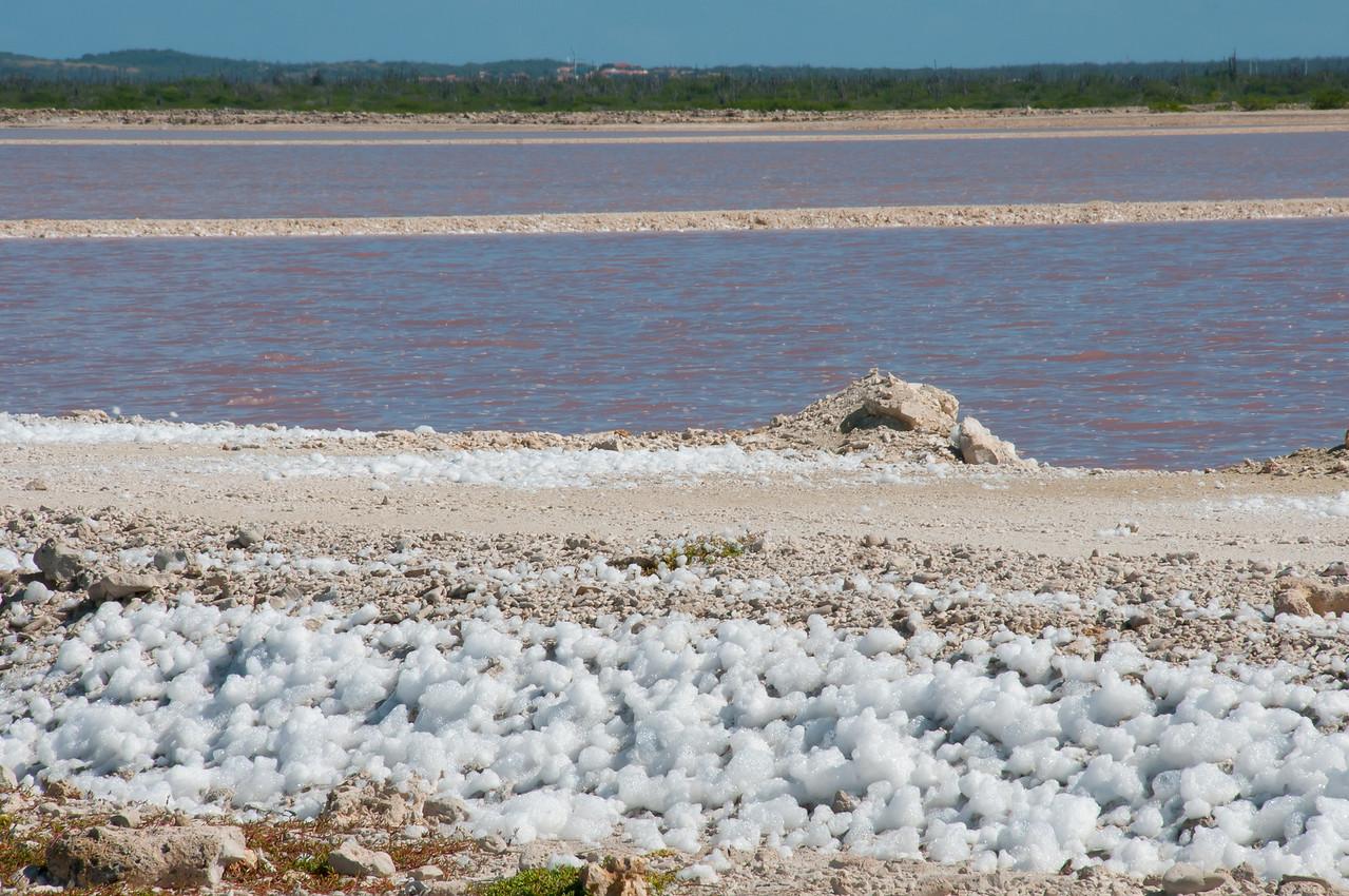 Salt scattered on the island of Bonaire