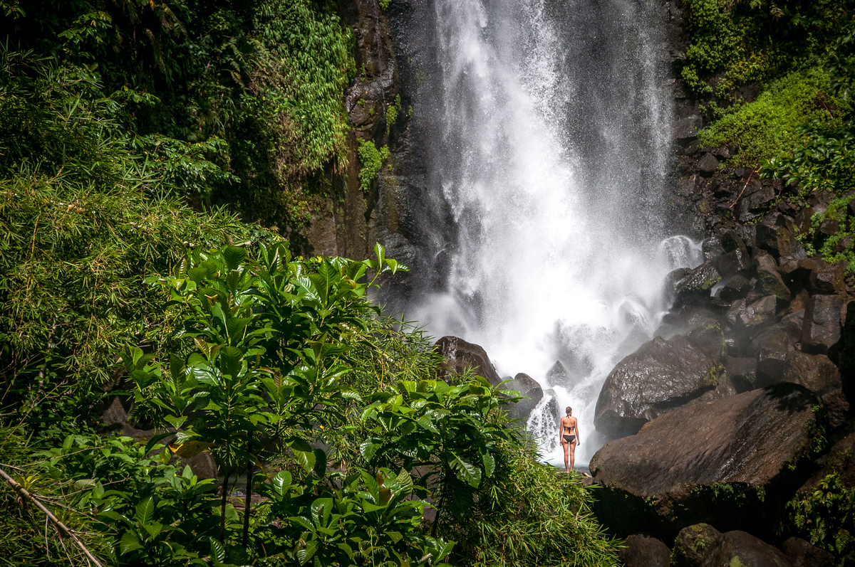 Woman Standing in Front of Trafalgar Falls, Dominica