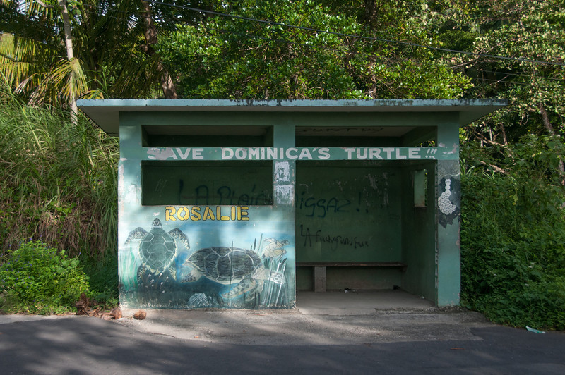 Save Dominica's Turtle sign