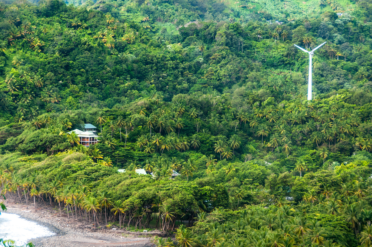 Windmill and forest in the island of Dominica