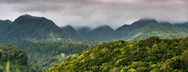 Fog over the mountain on the island of Dominica