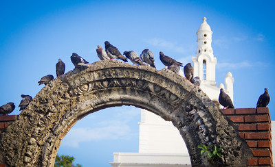 Pigeons congregate on an arch at the ruins of Hospital de San Nicolás de Bari with the spire of Iglesia de La Altagracia in the background