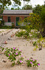 A pink colored island home on the Grand Cayman Islands.