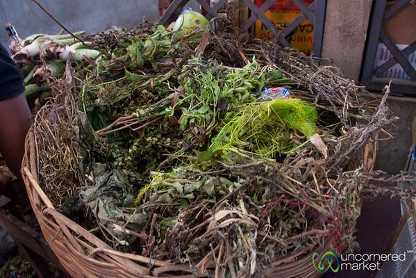 Haitian Traditional Medicine - Herbal Teas - Marché en Fer in Port-au-Prince, Haiti