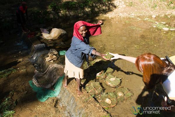 Washing Thyme Tea in the Stream - Seguin, Haiti