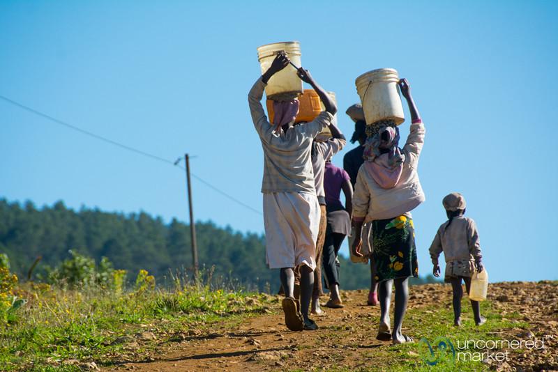 Carrying Water Home - Haiti