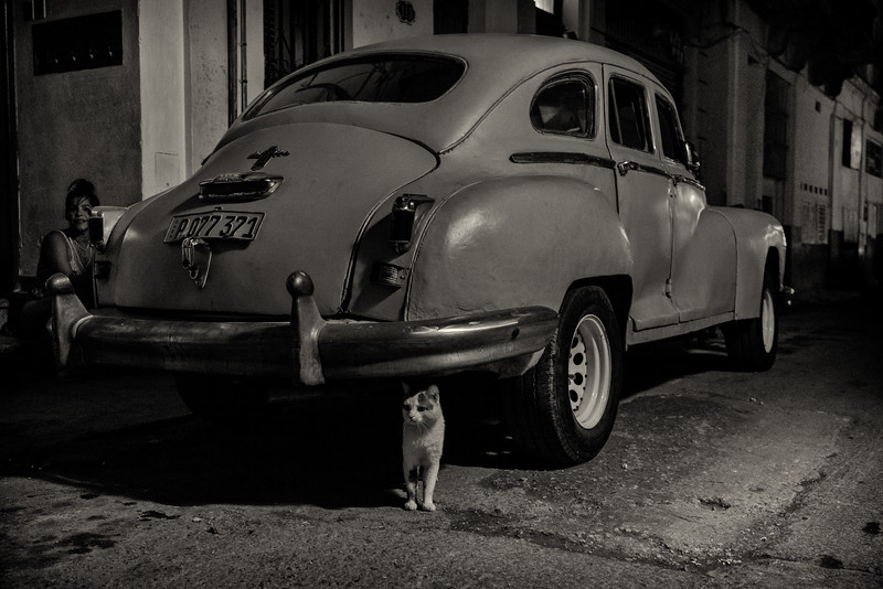 Cat, old car and woman. Habana Vieja.