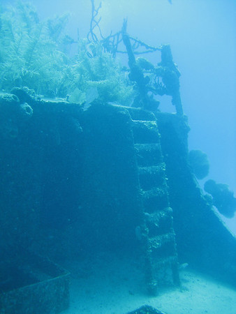 Roatan (Reef)