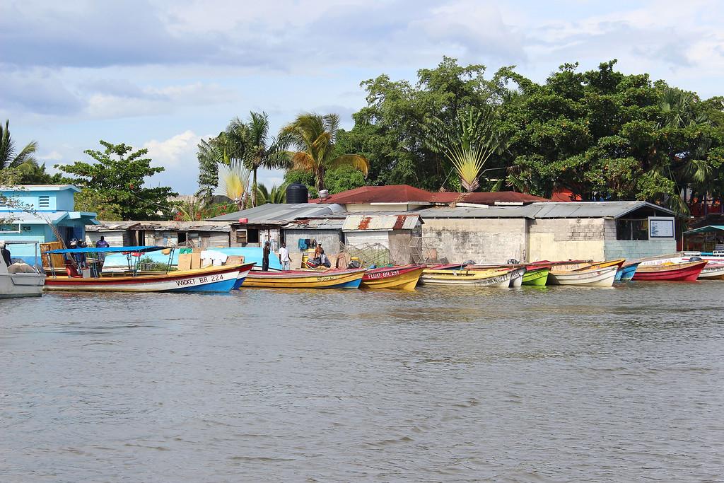 YS Falls and Black River Safari Tour in the south coast of Jamaica