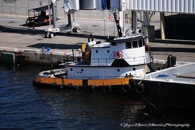 Tug at Ft. Lauderdale port