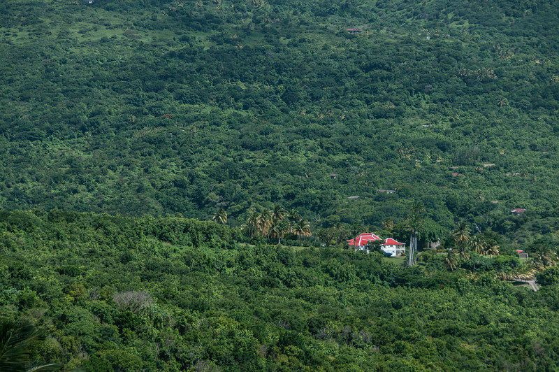 Overlooking view of rainforest in Montserrat