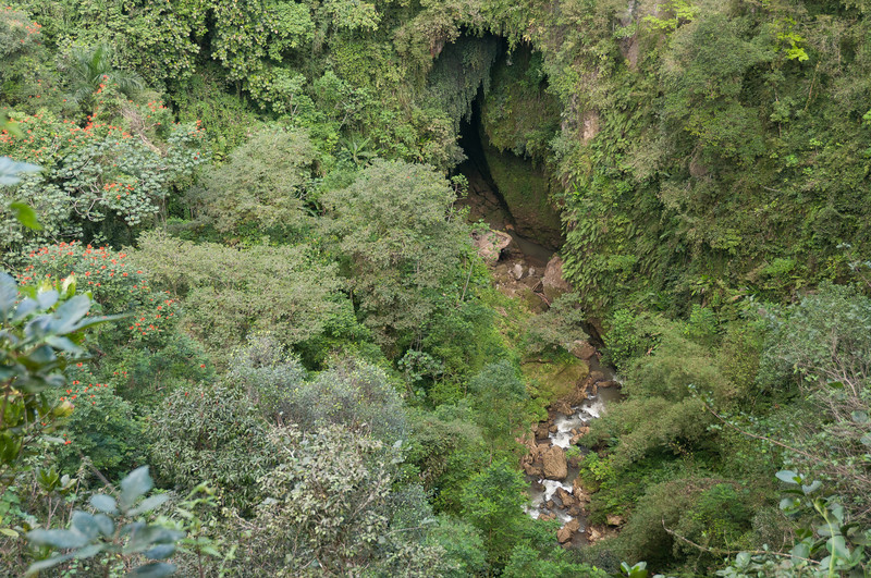 Inside Camuy River Cave Park - Puerto Rico
