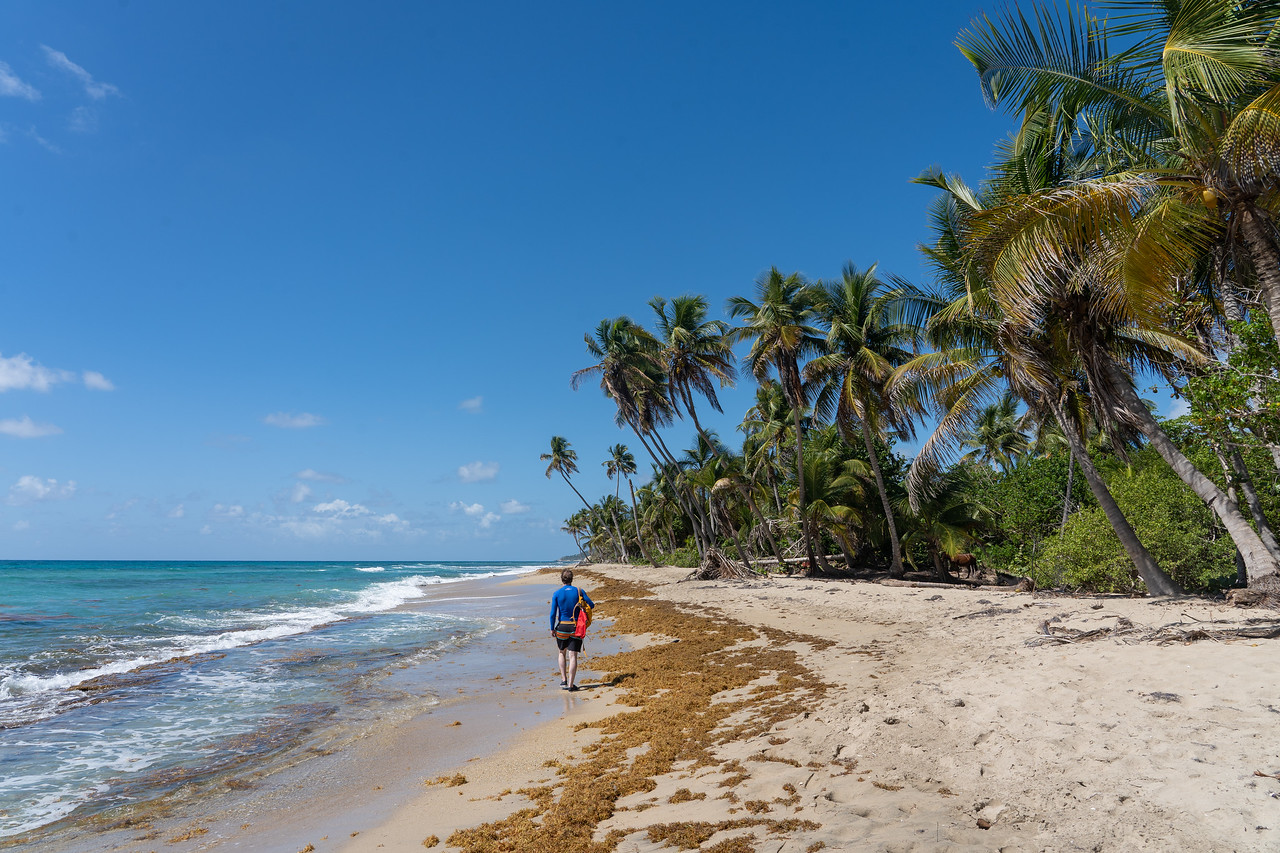Coconut Beach on Vieques