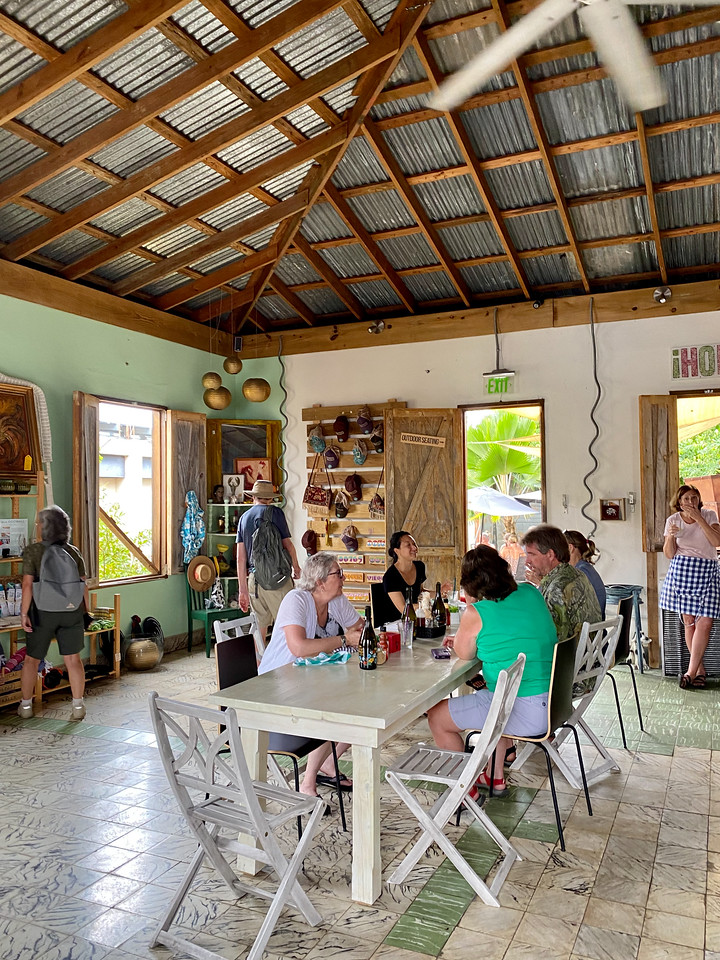 Rising Roost on Vieques