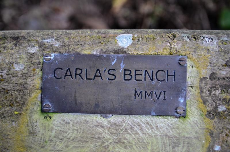 Carla's Bench overlooks Diamond Rock.