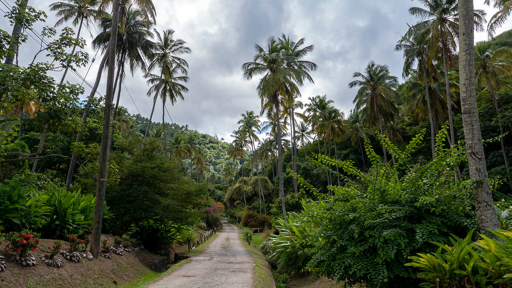 Morne Coubaril Estate Gardens - Things to do in St Lucia
