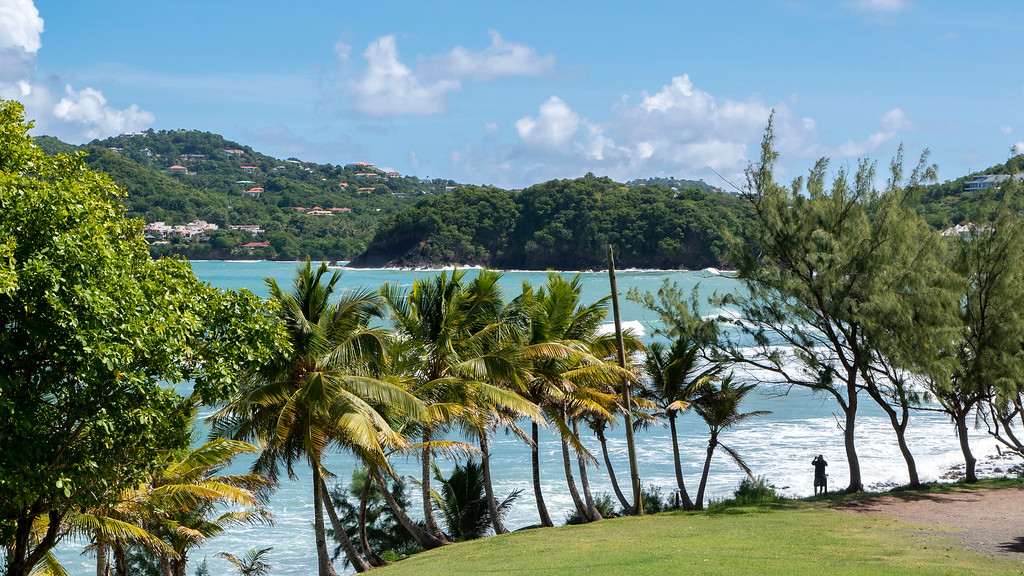 Beautiful beaches and palm trees in Saint Lucia