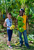 A banana plantation in rural St. Lucia, Caribbean, West Indies.