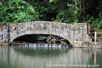 El Yunque National Park Rainforest bridge
