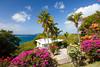 A home with colorful tropical vegetation overlooing Cruz Bay, St. John, US Virgin Islands, Caribbean.