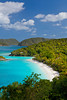 Trunk Bay in Virgin Islands National Park on St. John, US Virgin Islands, Caribbean.