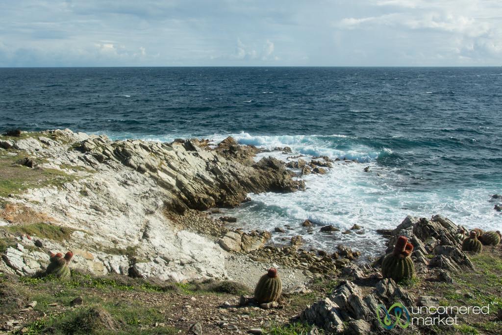 Northern St. Martin Coastline Views