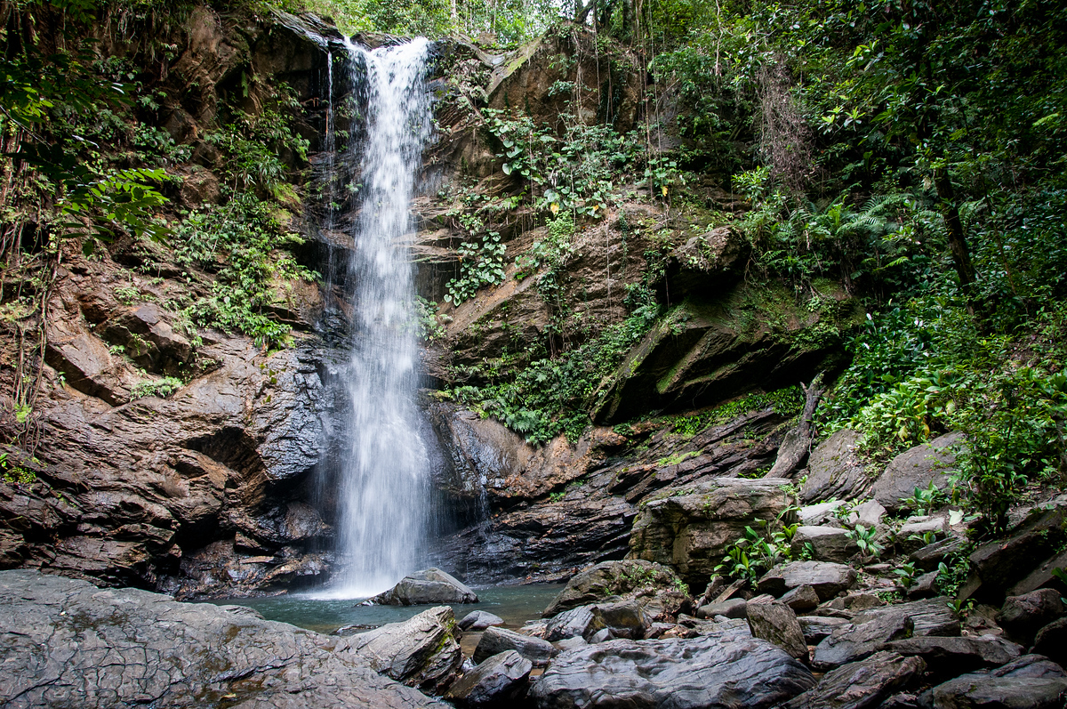 Waterfall on the Island of Trinidad