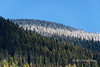 Snow-line above Mitchell Creek, Cariboo-Chilcotin Region, British Columbia
