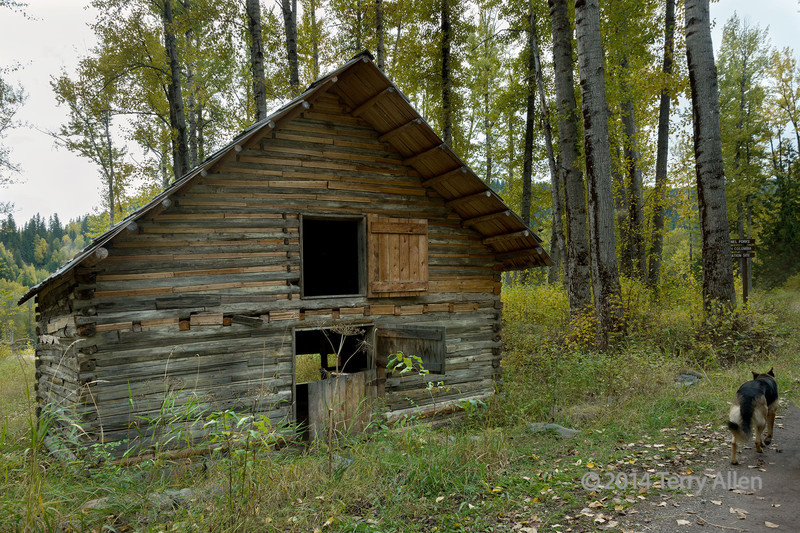 Restored stable and bawdy house, ghost town of Quesnel Forks, near Likely, British Columbia