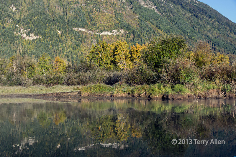 Fall colours and reflections on the Mitchell River, Cariboo-Chilcotin, British Columbia