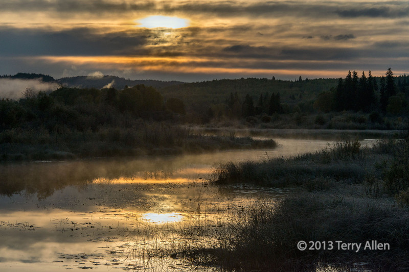 """Sunrise with mist and reflections on a frosty morning in the wetlands, nearly Likely, British Columbia<br /> <br /> Other photos from this beautiful wilderness area can be seen here: <a href=""""http://goo.gl/EW7sBe"""">http://goo.gl/EW7sBe</a><br /> <br /> 31/12/13  <a href=""""http://www.allenfotowild.com"""">http://www.allenfotowild.com</a>"""